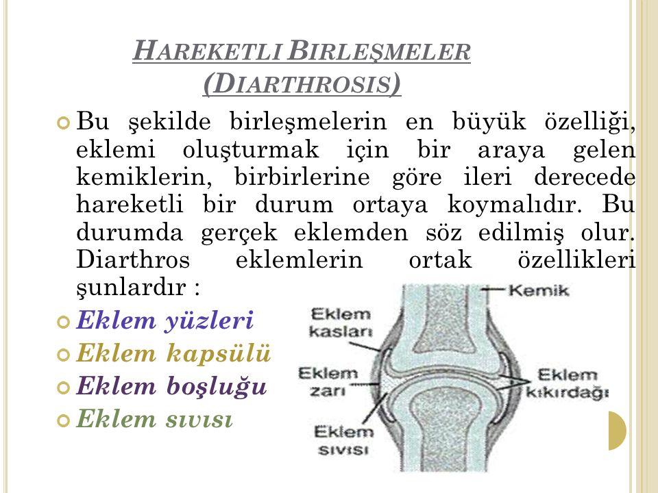 Hareketli Birleşmeler (Diarthrosis)