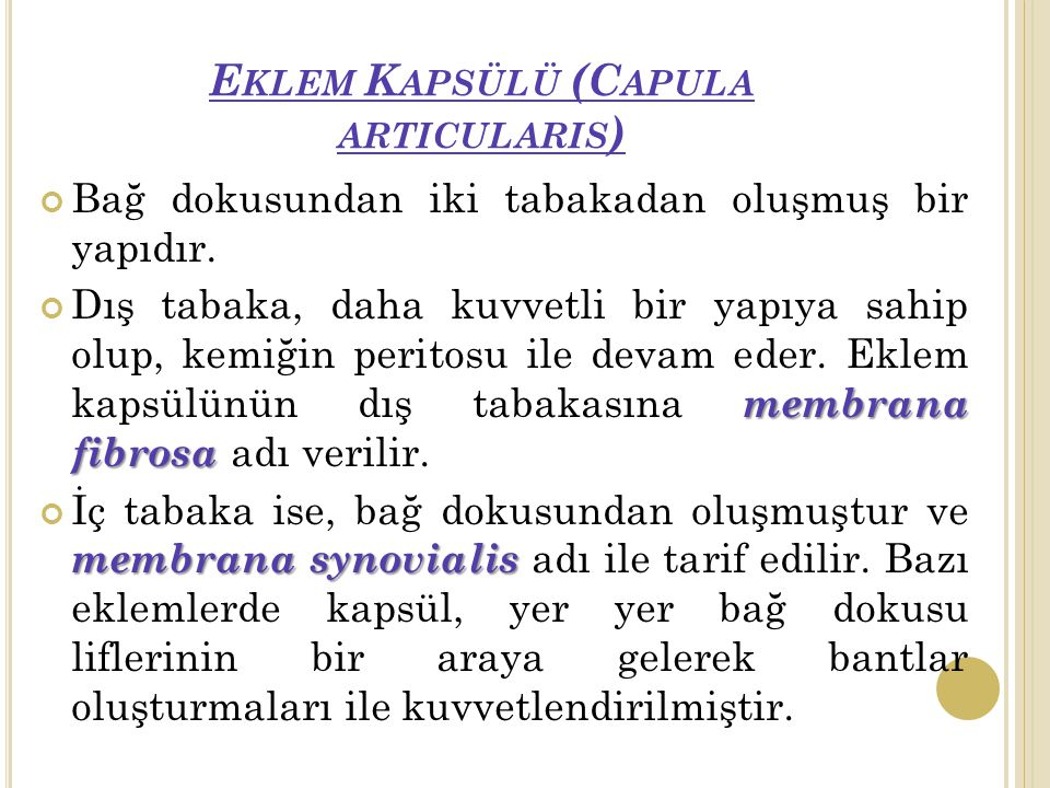 Eklem Kapsülü (Capula articularis)