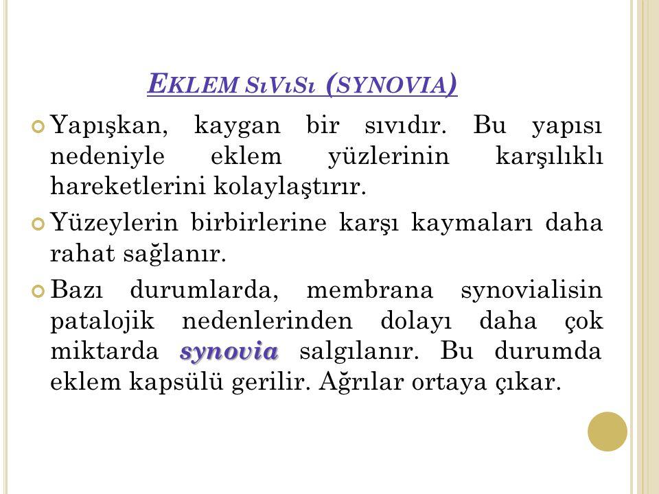 Eklem sıvısı (synovia)