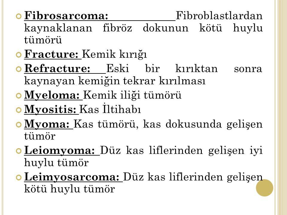Fibrosarcoma: Fibroblastlardan kaynaklanan fibröz dokunun kötü huylu tümörü