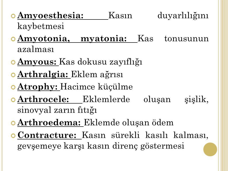 Amyoesthesia: Kasın duyarlılığını kaybetmesi