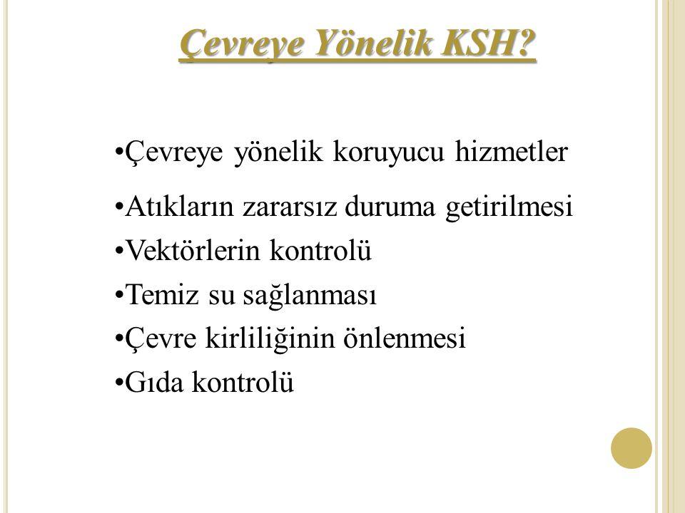 Çevreye Yönelik KSH Çevreye yönelik koruyucu hizmetler
