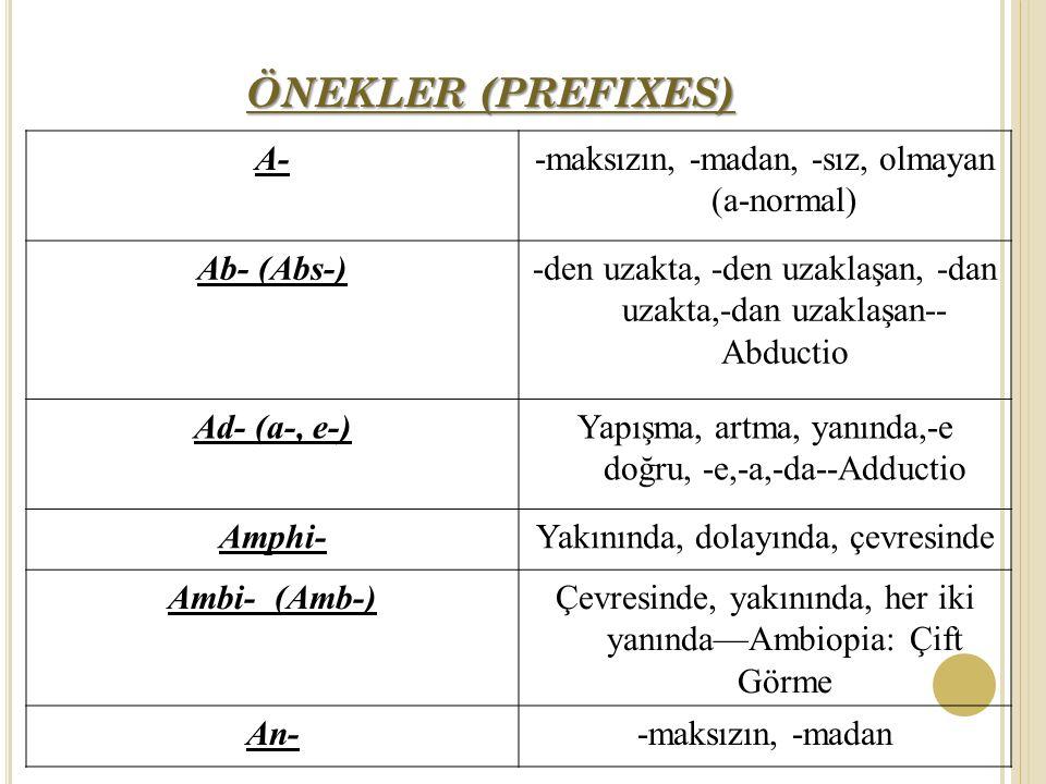 ÖNEKLER (PREFIXES) A- -maksızın, -madan, -sız, olmayan (a-normal)