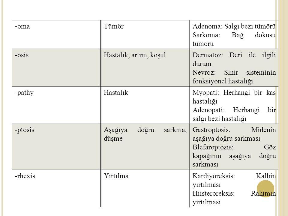 -oma Tümör. Adenoma: Salgı bezi tümörü. Sarkoma: Bağ dokusu tümörü. -osis. Hastalık, artım, koşul.