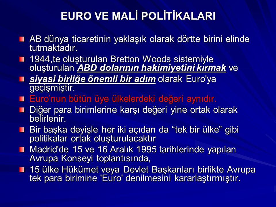 EURO VE MALİ POLİTİKALARI