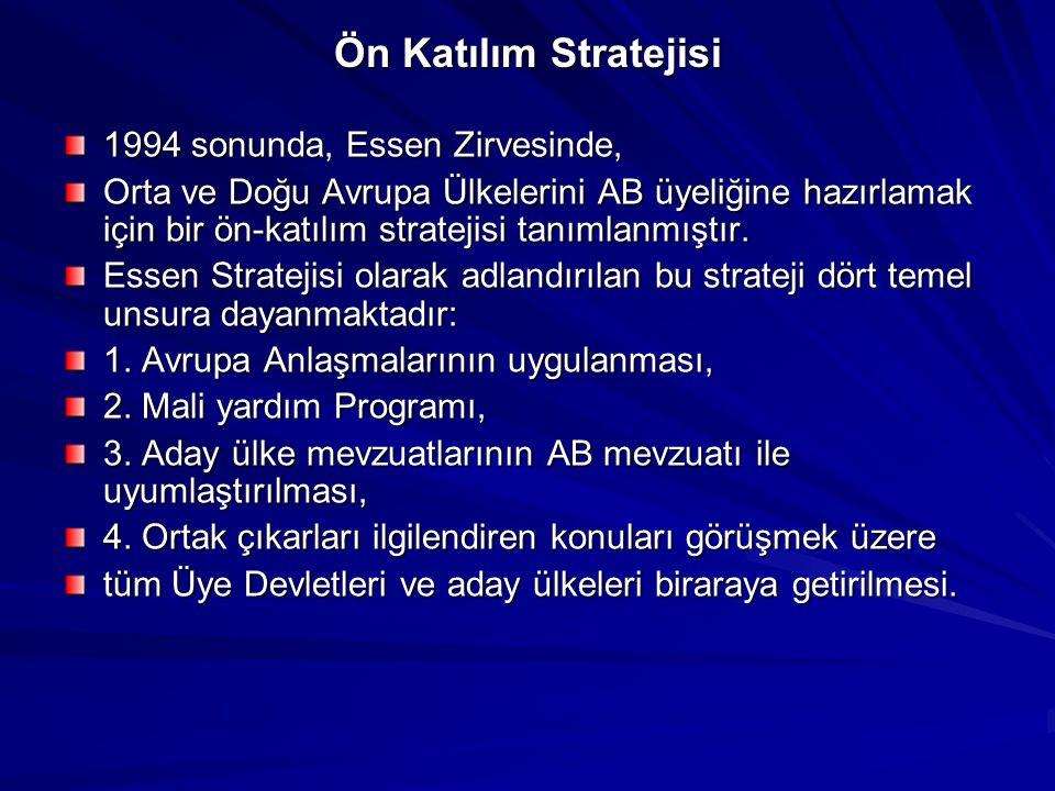 Ön Katılım Stratejisi 1994 sonunda, Essen Zirvesinde,
