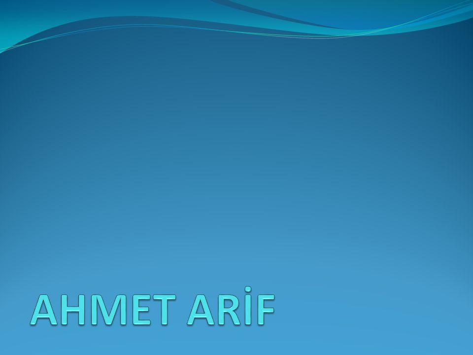 AHMET ARİF