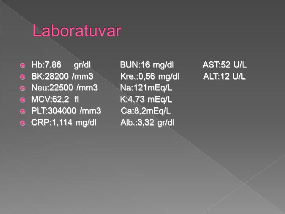 Laboratuvar Hb:7.86 gr/dl BUN:16 mg/dl AST:52 U/L