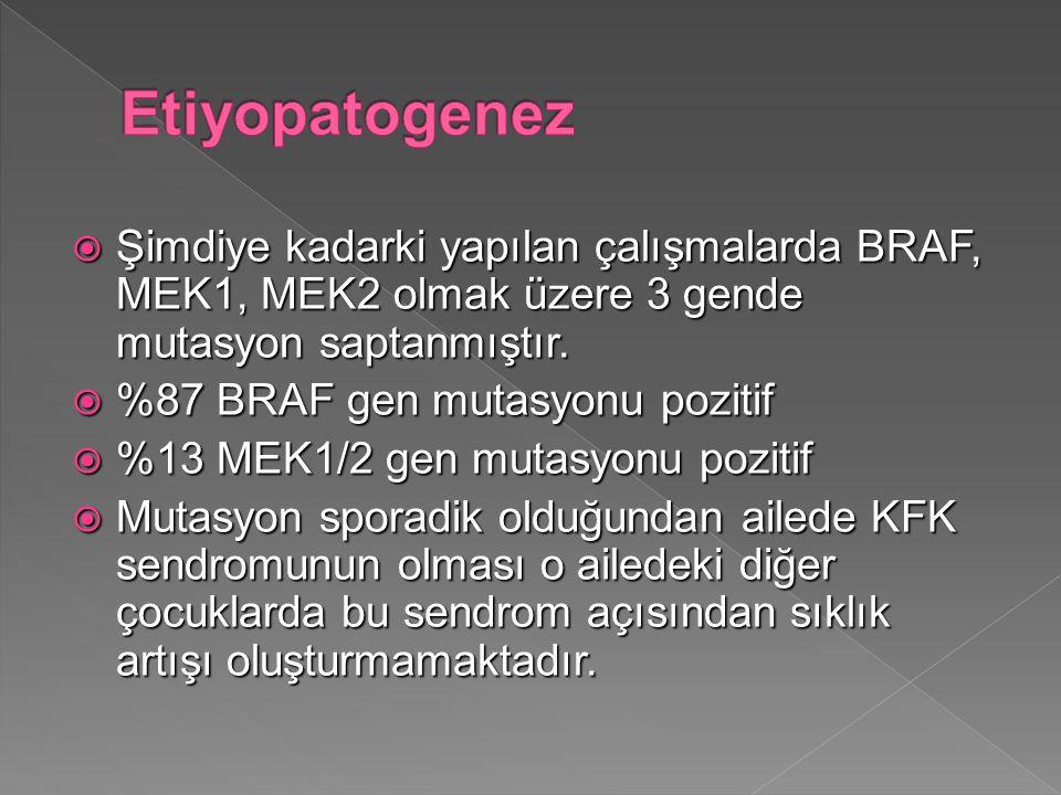 Etiyopatogenez Şimdiye kadarki yapılan çalışmalarda BRAF, MEK1, MEK2 olmak üzere 3 gende mutasyon saptanmıştır.