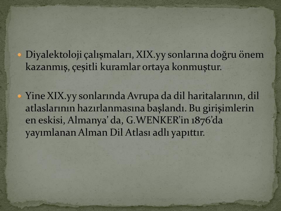 Diyalektoloji çalışmaları, XIX