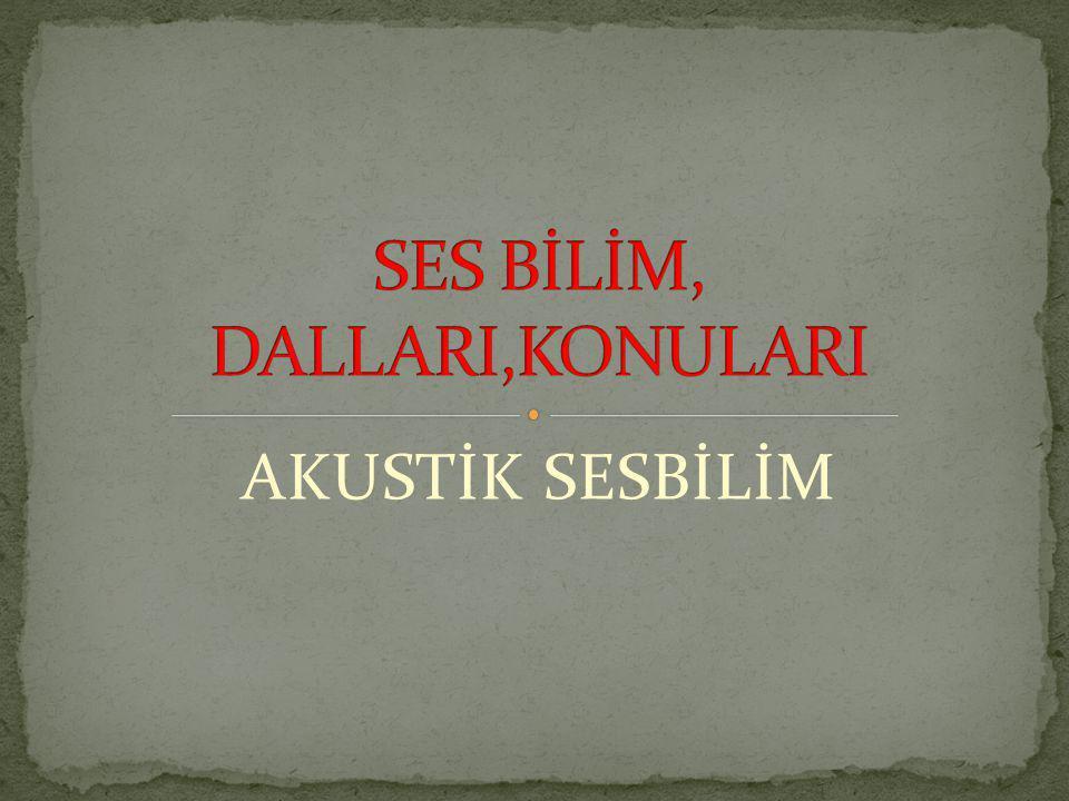 SES BİLİM, DALLARI,KONULARI