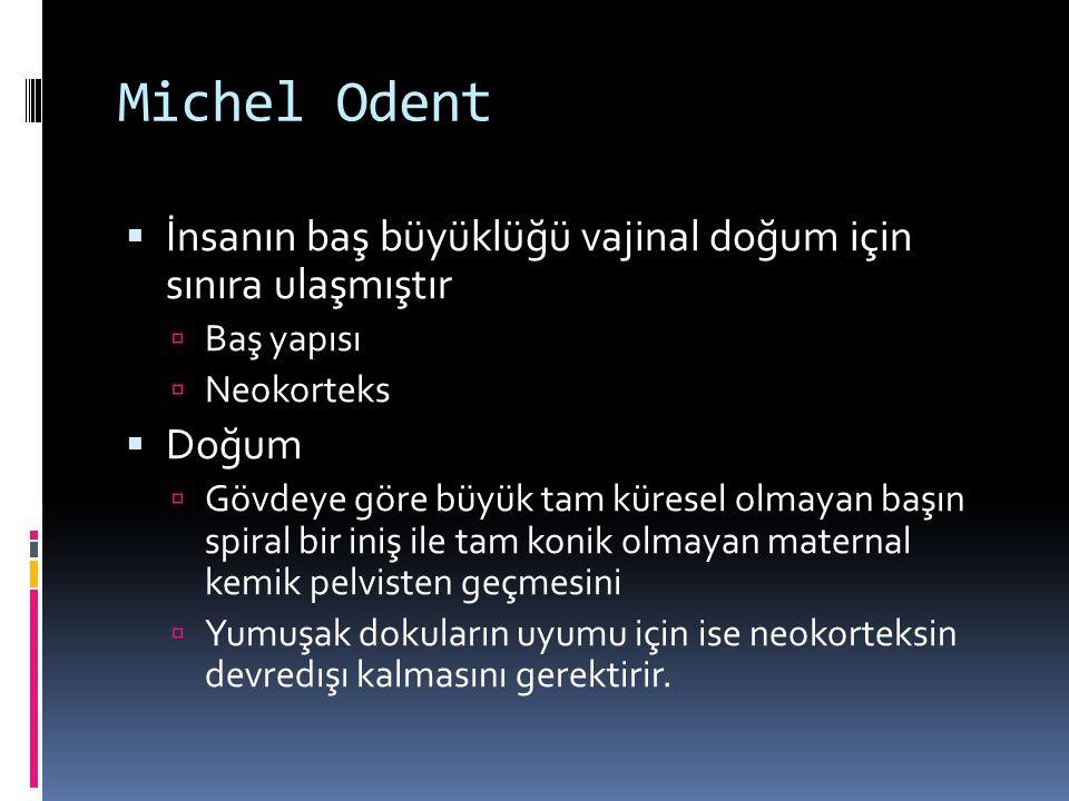 Michel Odent İnsanın baş büyüklüğü vajinal doğum için sınıra ulaşmıştır. Baş yapısı. Neokorteks.