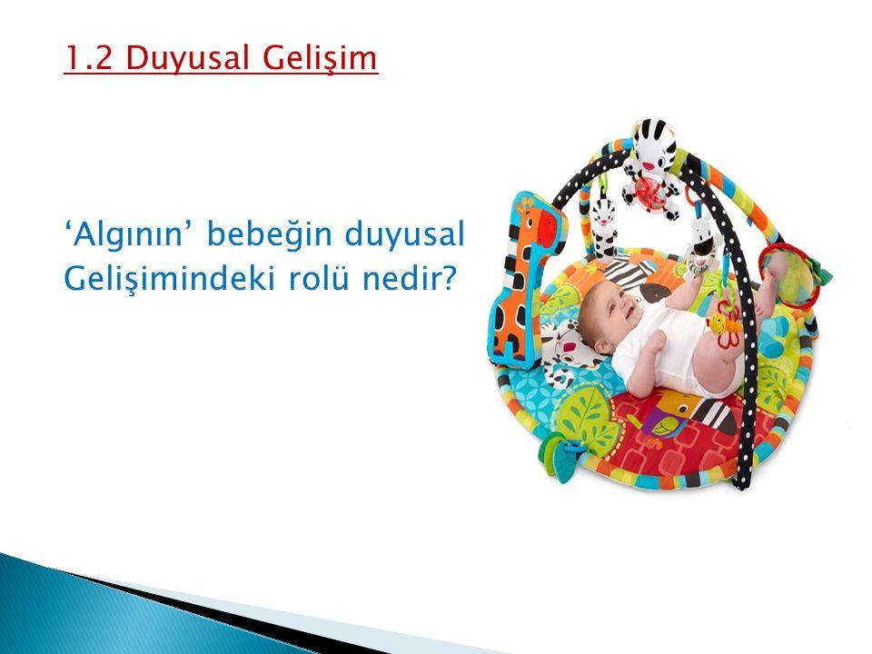 1.2 Duyusal Gelişim 'Algının' bebeğin duyusal Gelişimindeki rolü nedir