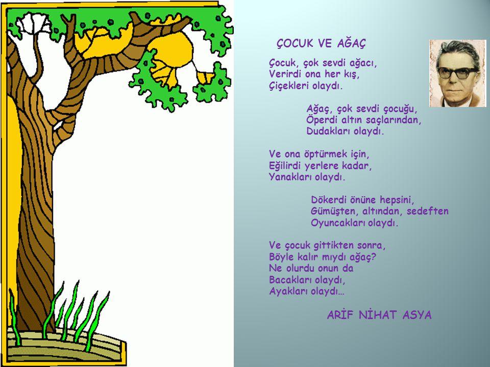 Çocuk, çok sevdi ağacı, Verirdi ona her kış, Çiçekleri olaydı