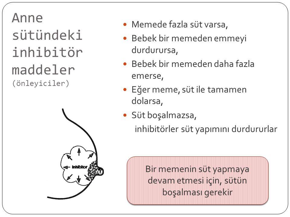 Anne sütündeki inhibitör maddeler (önleyiciler)