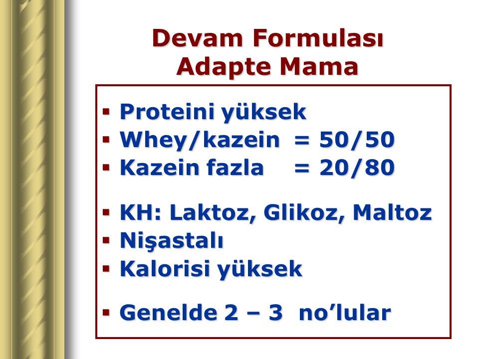 Devam Formulası Adapte Mama