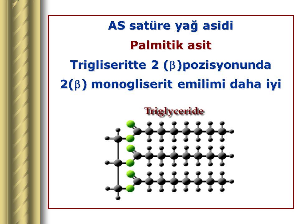 Trigliseritte 2 ()pozisyonunda