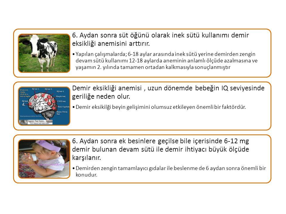 6. Aydan sonra süt öğünü olarak inek sütü kullanımı demir eksikliği anemisini arttırır.