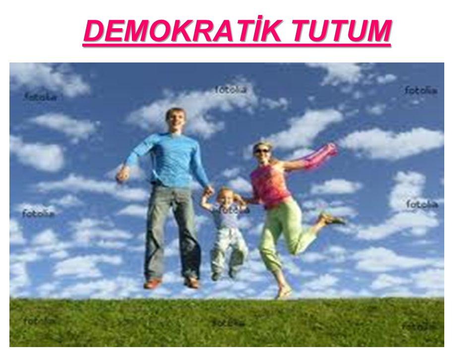 DEMOKRATİK TUTUM OYUN-SARAY VE MİMAR HİKAYESİ 31