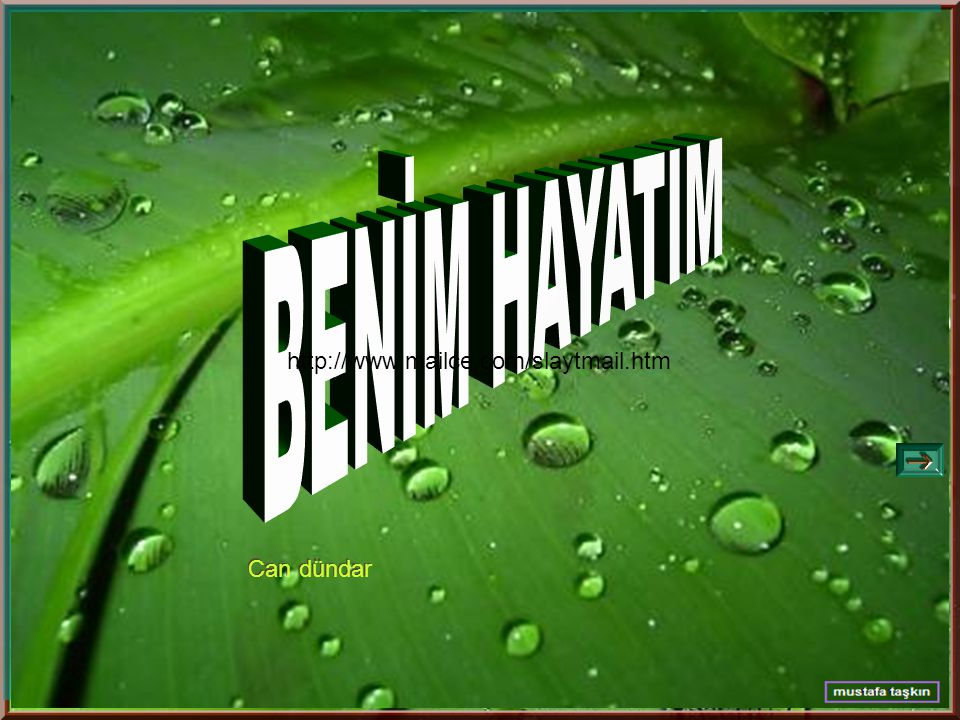 BENİM HAYATIM http://www.mailce.com/slaytmail.htm Can dündar