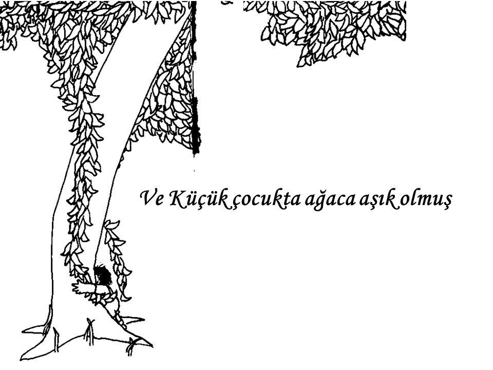 Ve Küçük çocukta ağaca aşık olmuş