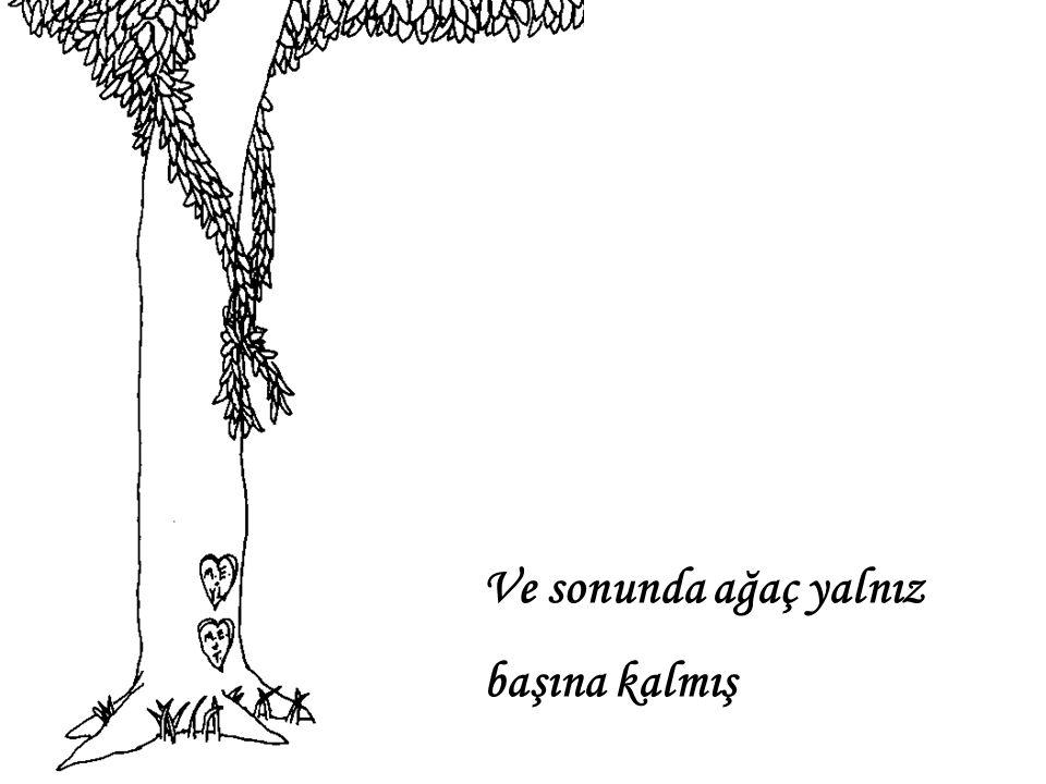 Ve sonunda ağaç yalnız başına kalmış
