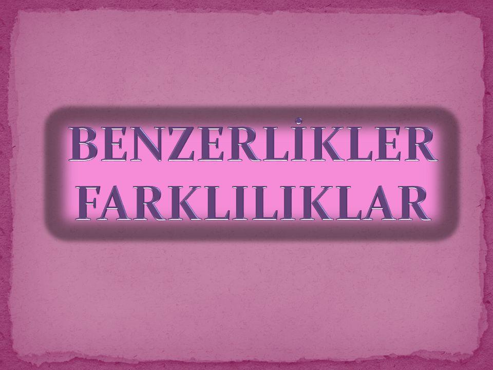 BENZERLİKLER FARKLILIKLAR