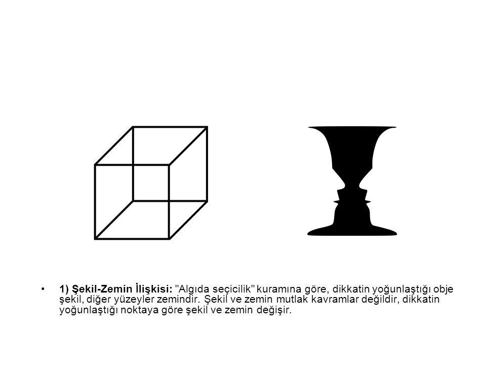 1) Şekil-Zemin İlişkisi: Algıda seçicilik kuramına göre, dikkatin yoğunlaştığı obje şekil, diğer yüzeyler zemindir.