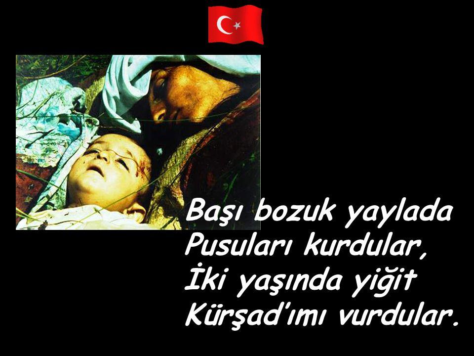 Başı bozuk yaylada Pusuları kurdular, İki yaşında yiğit Kürşad'ımı vurdular.