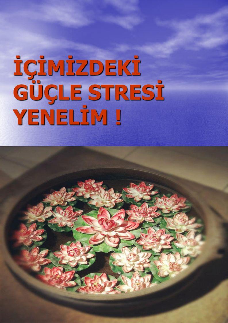 İÇİMİZDEKİ GÜÇLE STRESİ YENELİM !