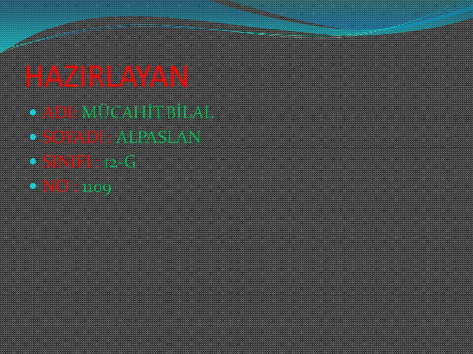 HAZIRLAYAN ADI: MÜCAHİT BİLAL SOYADI : ALPASLAN SINIFI : 12-G
