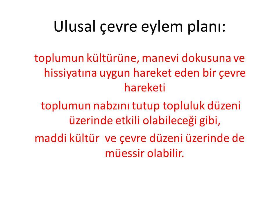 Ulusal çevre eylem planı: