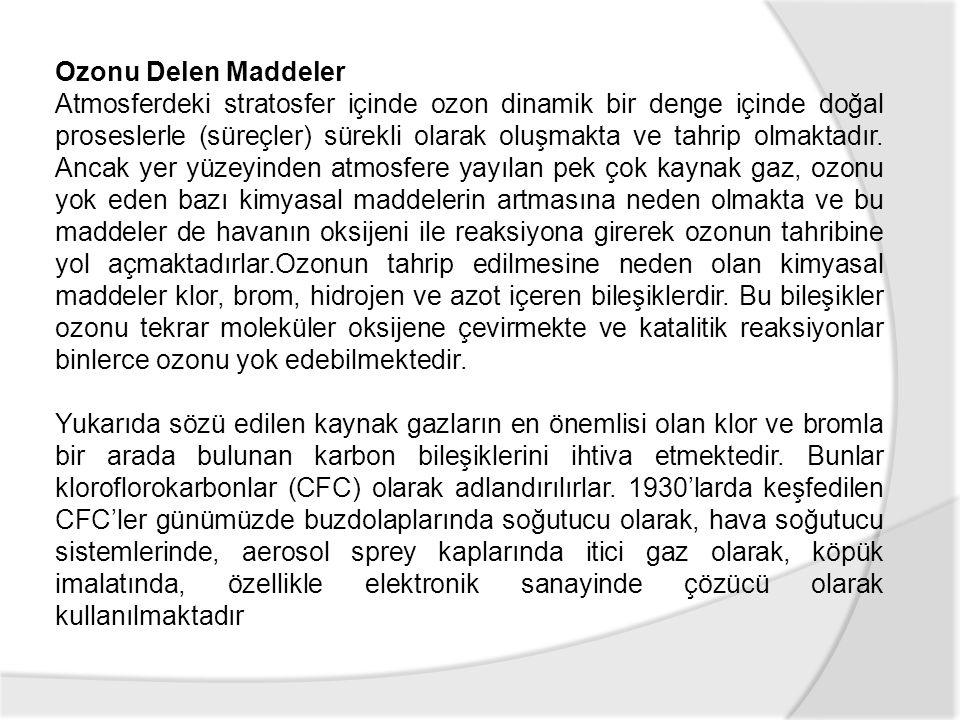 Ozonu Delen Maddeler