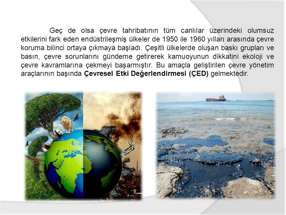 Geç de olsa çevre tahribatının tüm canlılar üzerindeki olumsuz etkilerini fark eden endüstrileşmiş ülkeler de 1950 ile 1960 yılları arasında çevre koruma bilinci ortaya çıkmaya başladı.