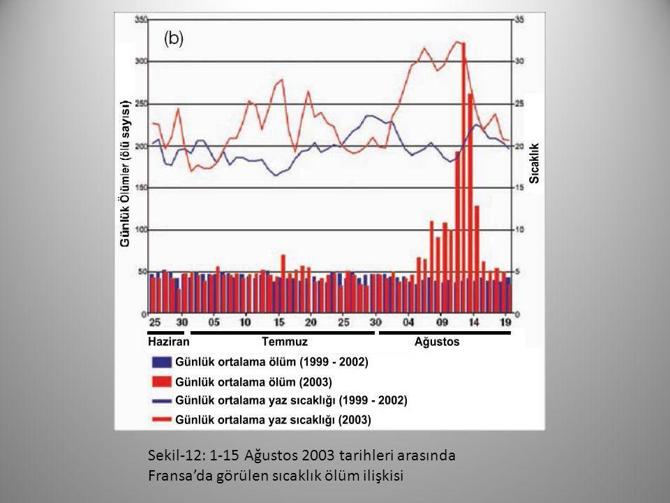 Sekil-12: 1-15 Ağustos 2003 tarihleri arasında Fransa'da görülen sıcaklık ölüm ilişkisi