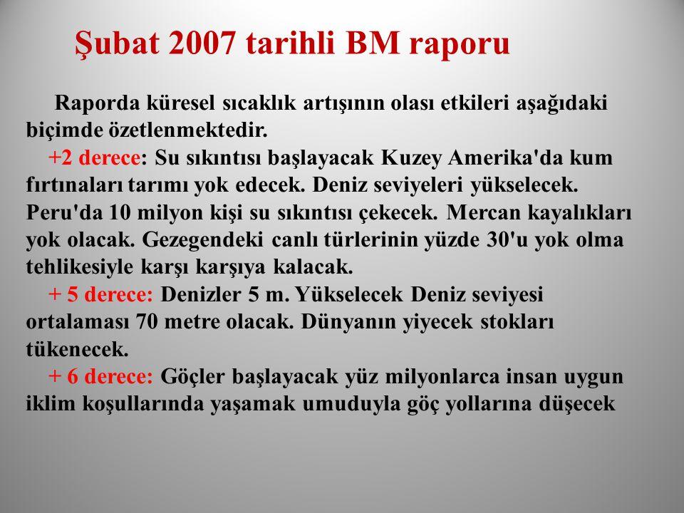 Şubat 2007 tarihli BM raporu