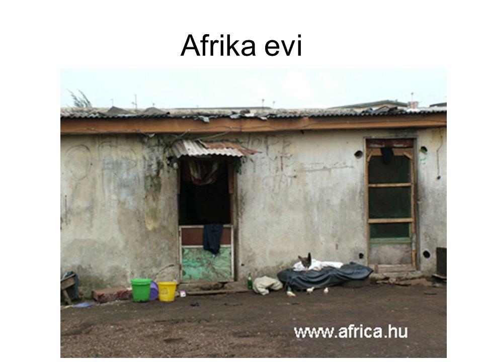 Afrika evi