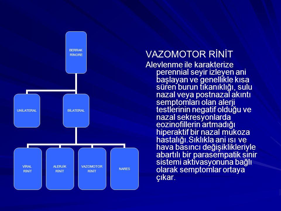 VAZOMOTOR RİNİT