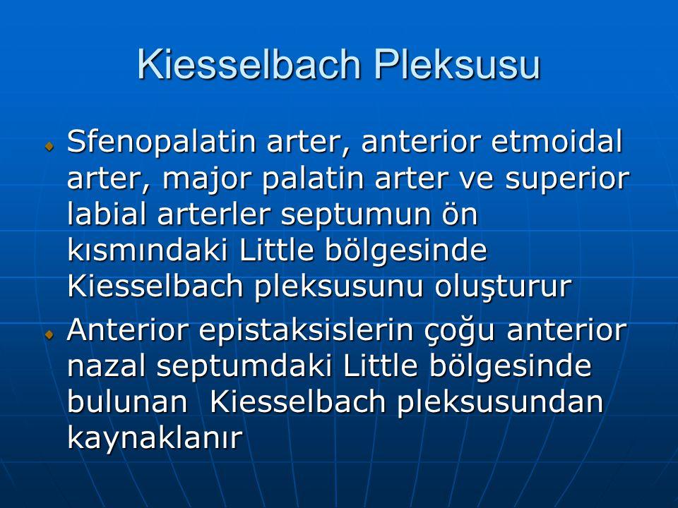 Kiesselbach Pleksusu