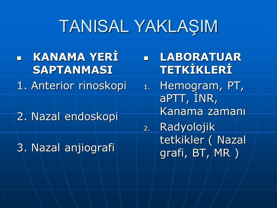 TANISAL YAKLAŞIM KANAMA YERİ SAPTANMASI 1. Anterior rinoskopi