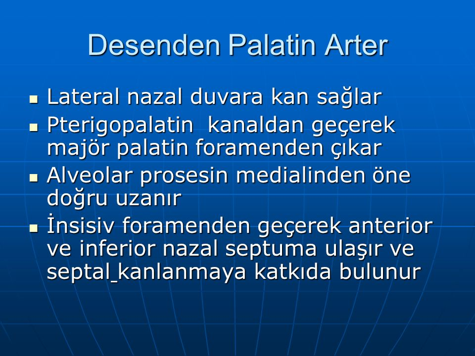 Desenden Palatin Arter