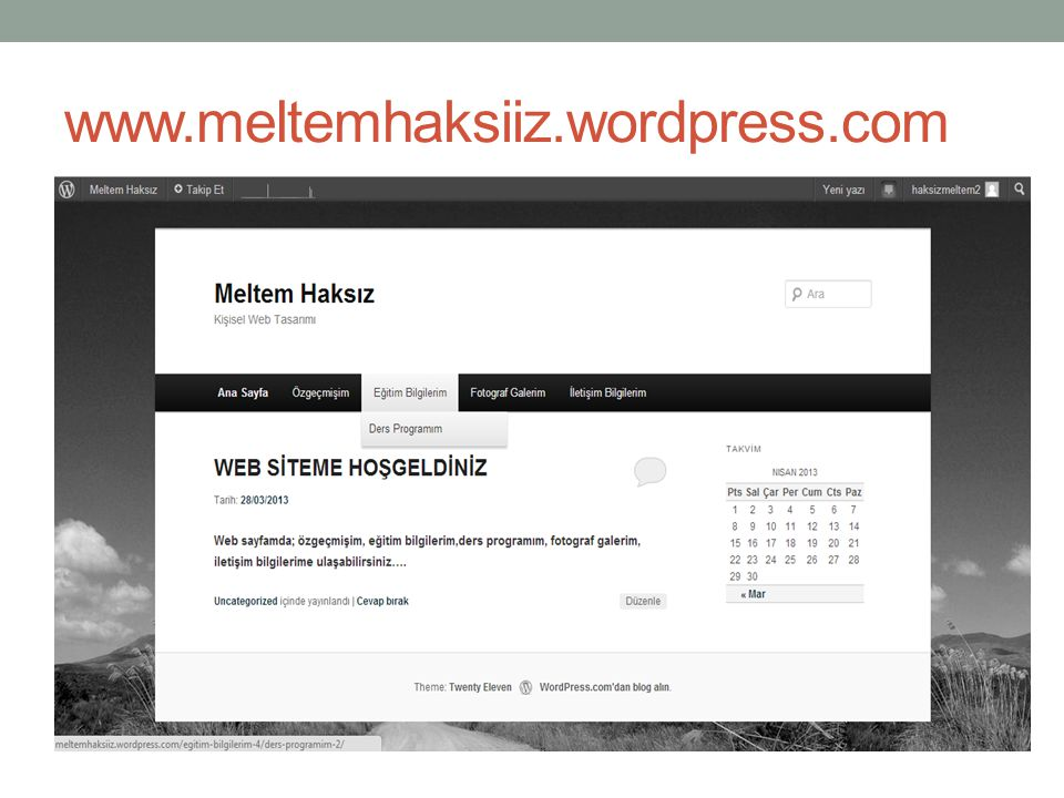 www.meltemhaksiiz.wordpress.com