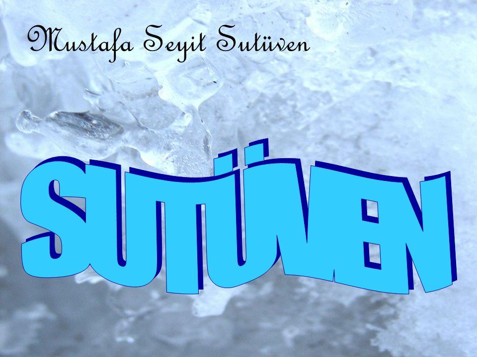 Mustafa Seyit Sutüven SUTÜVEN