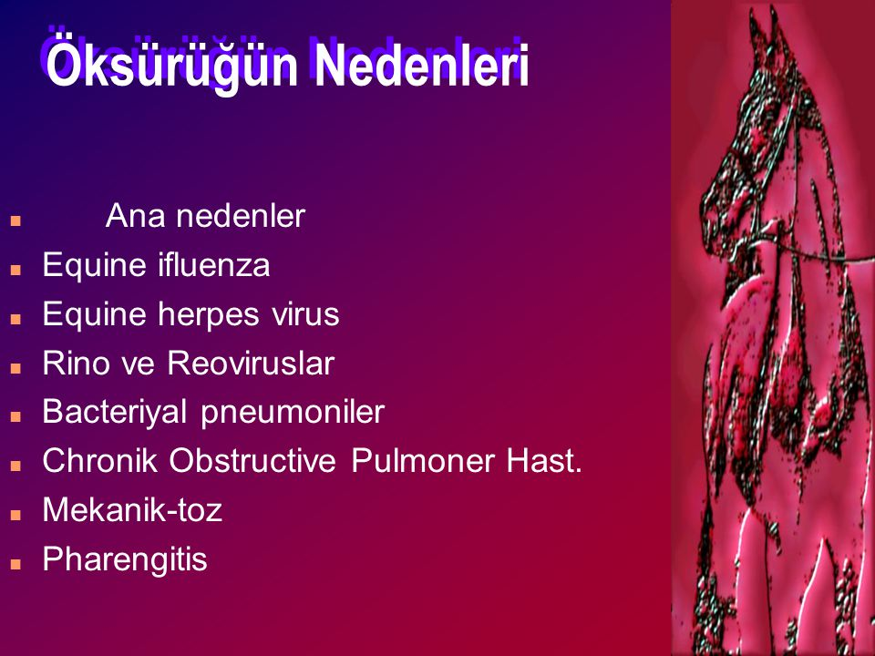 Öksürüğün Nedenleri Ana nedenler Equine ifluenza Equine herpes virus
