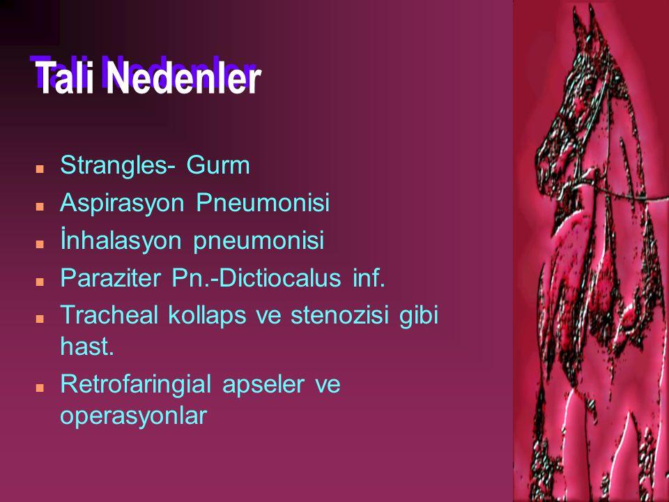 Tali Nedenler Strangles- Gurm Aspirasyon Pneumonisi