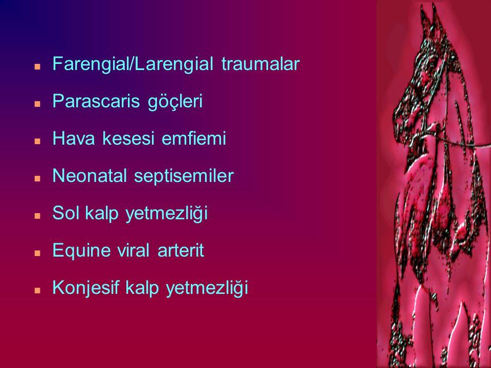 Farengial/Larengial traumalar