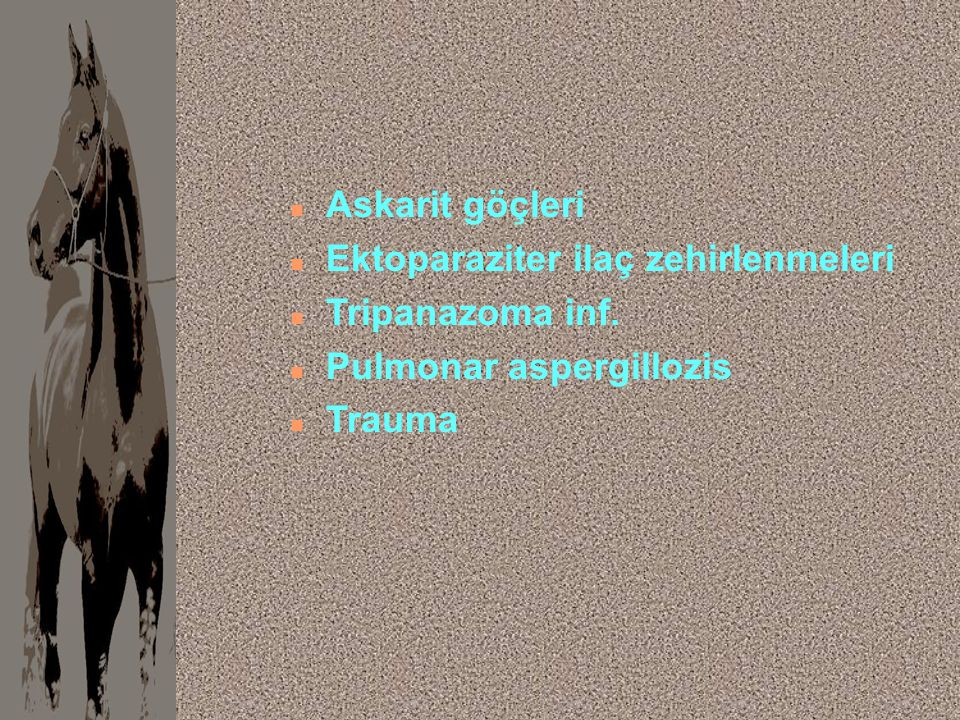 Askarit göçleri Ektoparaziter ilaç zehirlenmeleri Tripanazoma inf. Pulmonar aspergillozis Trauma