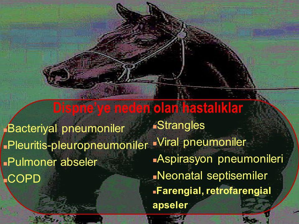 Dispne'ye neden olan hastalıklar