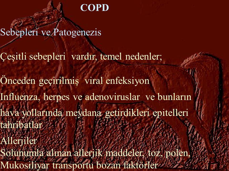 Sebepleri ve Patogenezis Çeşitli sebepleri vardır, temel nedenler;