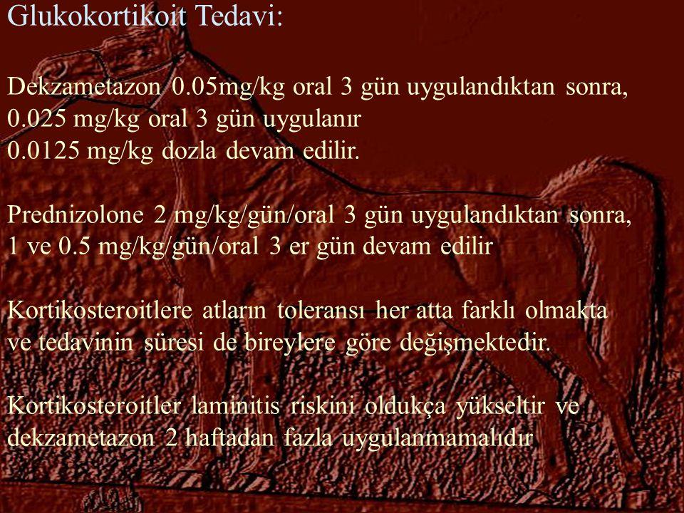 Glukokortikoit Tedavi: